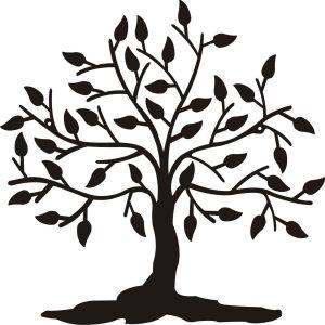 populating the tree of life albertsen lab rh albertsenlab org tree of life logos in pics tree of life logic lyrics